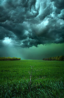 Vertical Photograph - There Came A Wind by Phil Koch
