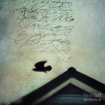 Blackbirds Photograph - This Roof Is My Home by Priska Wettstein