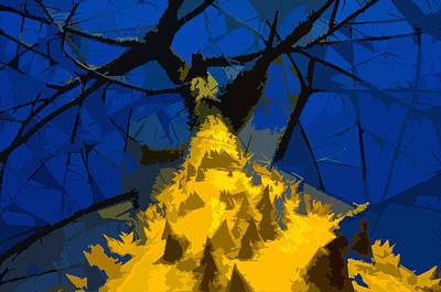 Thorny Tree Blue Sky Print by David Lee Thompson