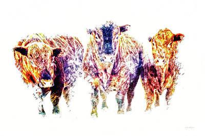 Western Purses Photograph - Three Amigos by Amanda Smith