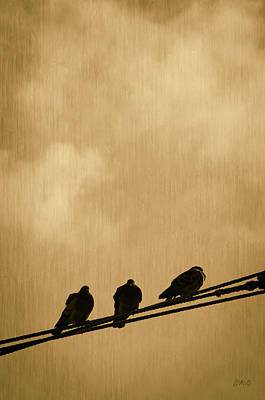 Three Birds On A Wire Print by Dave Gordon