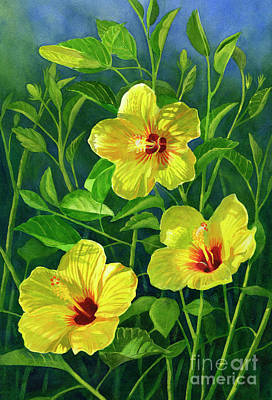 Gouache Painting - Three Bright Yellow Hibiscus Flowers by Sharon Freeman