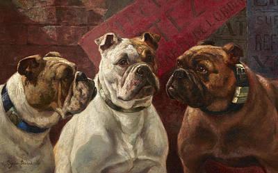 Purebred Painting - Three Bulldogs by Charles Boland