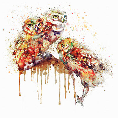 Three Cute Owls Watercolor Print by Marian Voicu