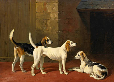 Painting - Three Fox Hounds In A Paved Kennel Yard by William Barraud