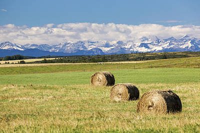 Three Hay Bales In A Field Print by Michael Interisano