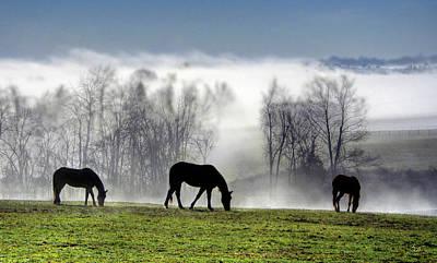 Three Horse Morning Print by Sam Davis Johnson
