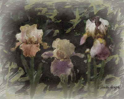 Irises Digital Art - Three Iris by Arline Wagner
