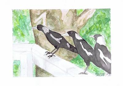 Magpies Drawing - Three Little Magpies by Jenny Geldart