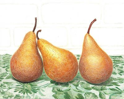 Pear Drawing - Three Pears by Loraine LeBlanc