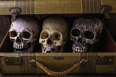 Three Skulls In Suitcase Print by Garry Gay