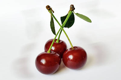 Sour Mixed Media - Three Sour Cherries by Marinela Feier