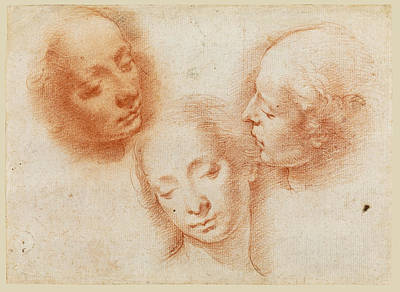 Drawing - Three Studies Of A Woman's Head by Alessandro Casolani