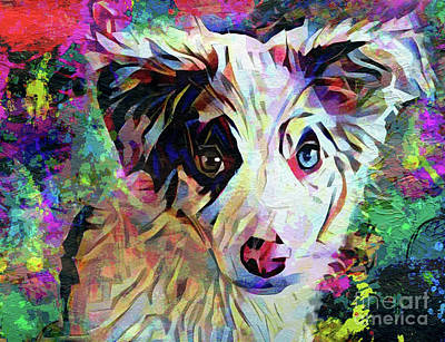 Australian Shepherd Painting - Throw The Ball by Jon Neidert