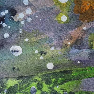 Tide Pool 1 Original by  Judy Bernier