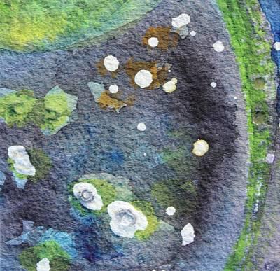 Tide Pool 2 Original by  Judy Bernier