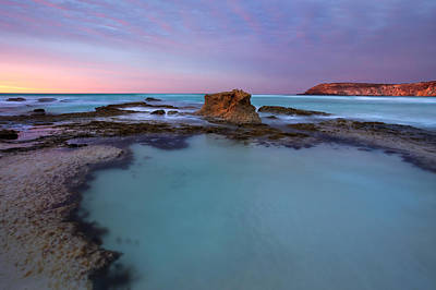 Kangaroo Photograph - Tidepool Dawn by Mike  Dawson