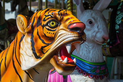 Rabbit Photograph - Tiger And Bunny Ride by Garry Gay