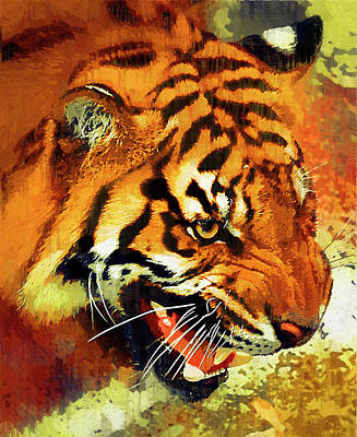 Growling Painting - Tiger At Waterhole by Clarence Alford