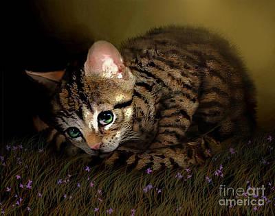 Cuddly Digital Art - Tiger Ball by Robert Foster