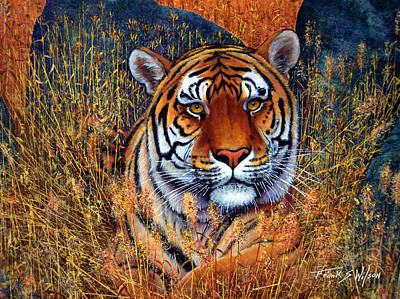 India Wildlife Painting - Tiger by Frank Wilson