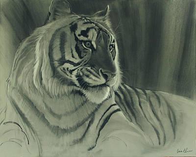 Digital Art - Tiger Light by Aaron Blaise