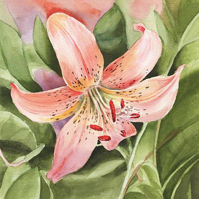 Tiger Lily Watercolor By Irina Sztukowski Print by Irina Sztukowski