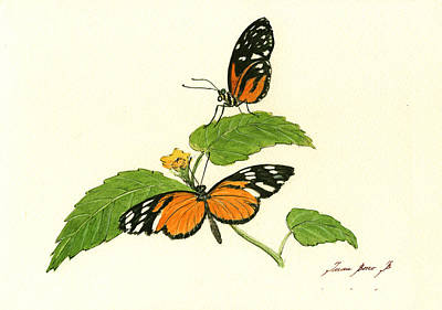 Tiger Longwing Heliconian Print by Juan Bosco