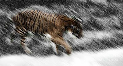 Digital Art - Tiger-proweling by Frank Williams
