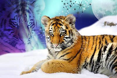 Tiger Treasures Print by Julie L Hoddinott