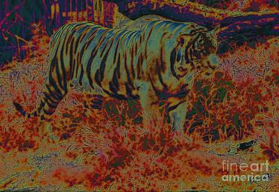 Digital Art - Tiger Tulsa Color by Frank Williams
