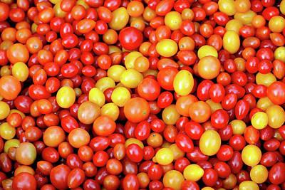 Tiny Tomatoes Print by Todd Klassy
