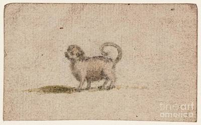 Title Sketch Of A Pug Dog Print by Susanna Duncombe