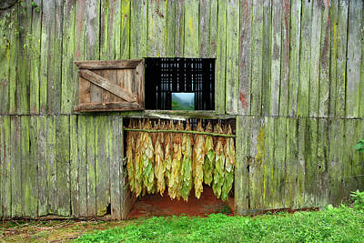 Tobacco Barn Original by Ron Morecraft