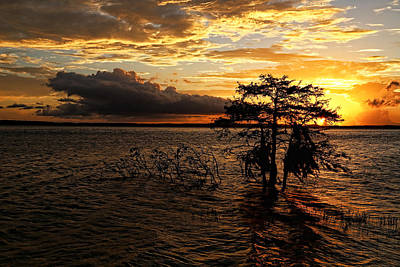 Toledo Bend Sunset Print by Judy Vincent