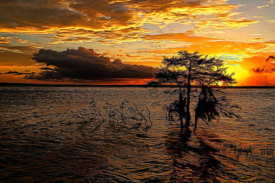 Toledo Bend Sunset Painted Print by Judy Vincent