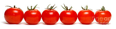 Tomato Row Print by Olivier Le Queinec