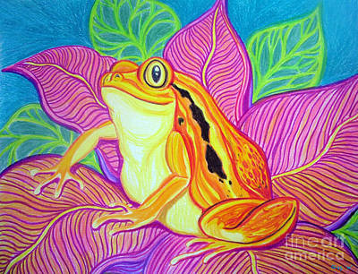 Amphibians Drawing - Tomatoe Frog by Nick Gustafson