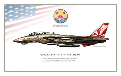 Tomcat Sundowners Profile Print by Peter Van Stigt