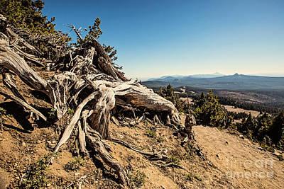 Top Of The Trail Print by Scott Pellegrin
