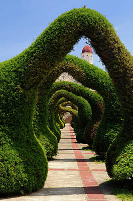 Topiary Garden Archways And Path In Zarcero Costa Rica With View Print by Reimar Gaertner