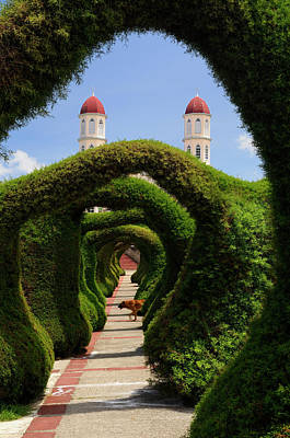 Topiary Garden Archways In Zarcero Costa Rica With Church And Do Print by Reimar Gaertner