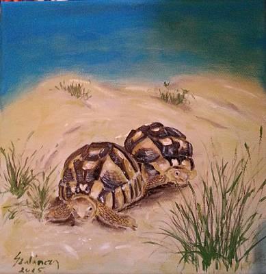 Turtle Painting - Tortoise by Judit Szalanczi