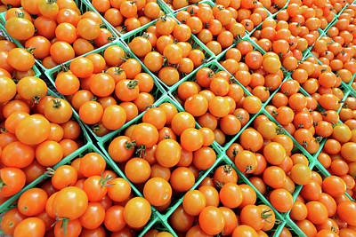 A Lot Photograph - Totally Tomato by Todd Klassy