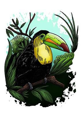 Toucan Drawing - Toucan by Adam Santana