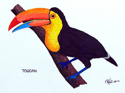 Toucan Drawing - Toucan by Frederic Kohli