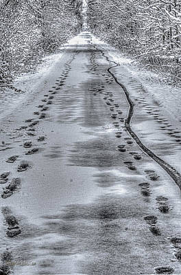 Crystal Photograph - Tracks On The Macomb Orchard Trail by LeeAnn McLaneGoetz McLaneGoetzStudioLLCcom