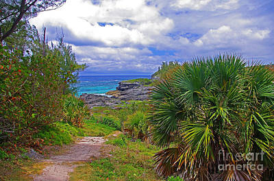 Photograph - Trail To A Bermuda Beach by Rich Walter
