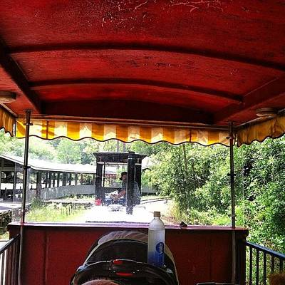 Train Photograph - Train Ride At Okefenokee Swamp by Joan McCool