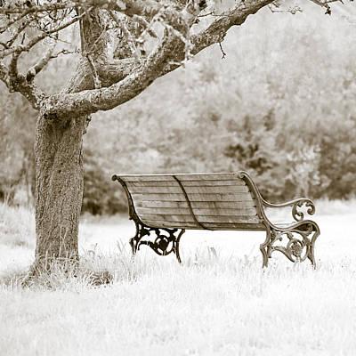 Garden Photograph - Tranquility by Frank Tschakert